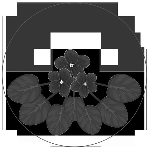 ElenaAV